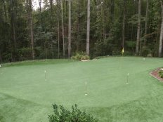 Tour Greens - Backyard Putting Green - 12