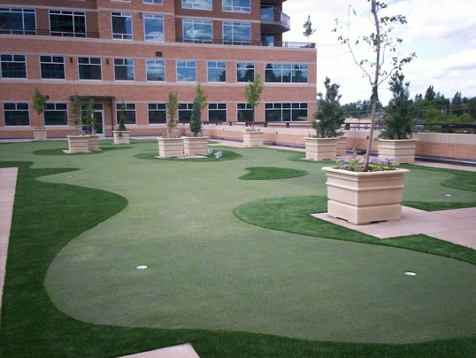 Tour Greens - Commercial Rooftop Green - 1